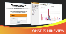 What is Mineview